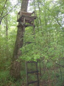 Old Wooden Deer Stand