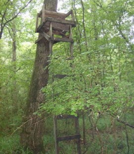 Old Wooden Deer Stand