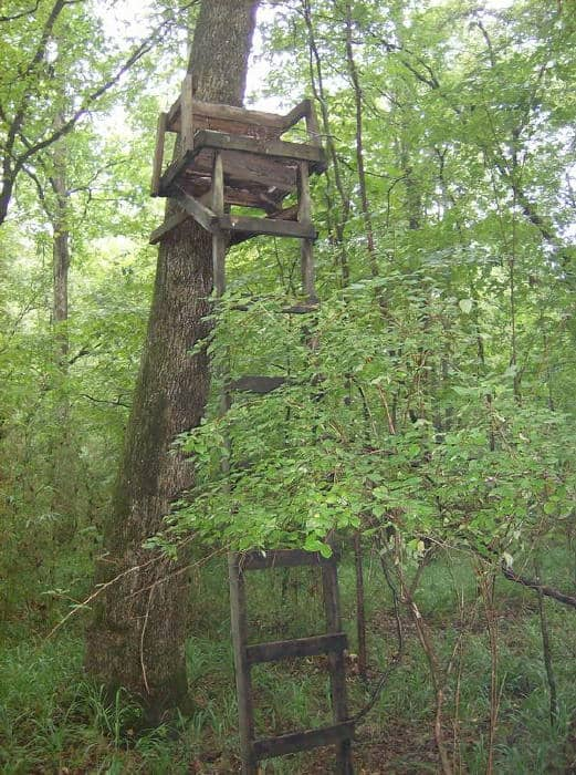 Are You Guilty of Putting Your Deer Stand Last?